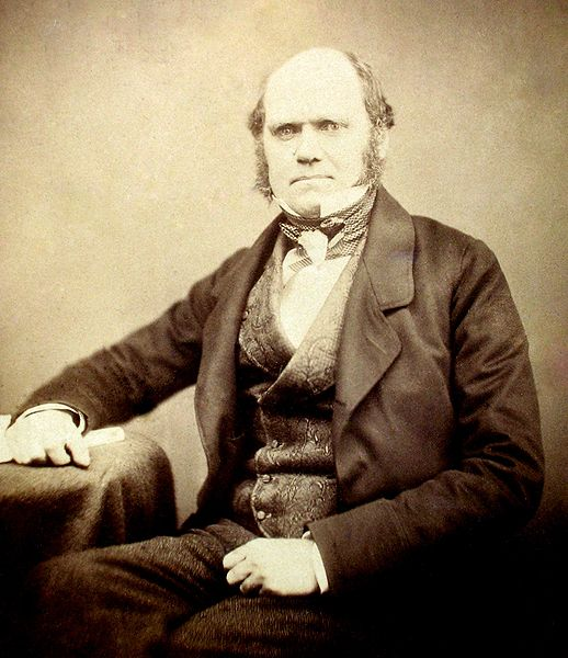518px-Charles_Darwin_by_Maull_and_Polyblank,_1855-1